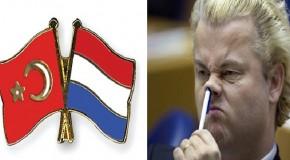 AZINLIK STATÜSÜ: HOLLANDA ÖRNEĞİ