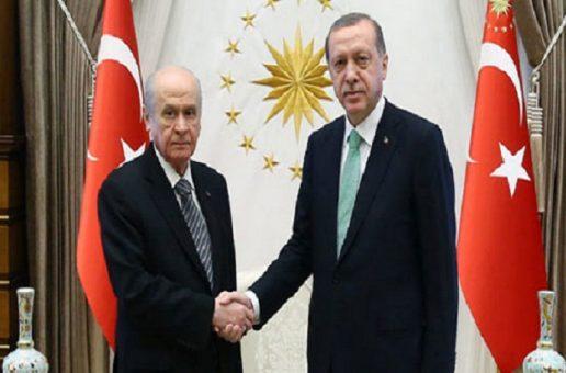 LES ELECTIONS ANTICIPEES EN TURQUIE