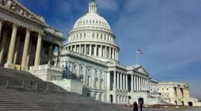SİYASAL SİSTEMLER: AMERİKA BİRLEŞİK DEVLETLERİ