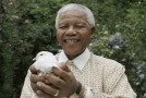 KEEPING NELSON MANDELA ALIVE