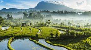 ASYA'DA DEĞİŞEN DENGELER