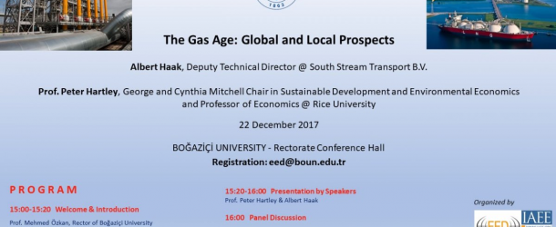 """THE GAS AGE: GLOBAL PROSPECTS"" PANEL"