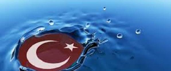 ASSESSMENT OF TURKISH FOREIGN POLICY IN 2014
