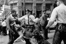 AMERİKA BİRLEŞİK DEVLETLERİ'NDE IRKÇILIK: BEYAZ ADAMIN KANLI TARİHİ