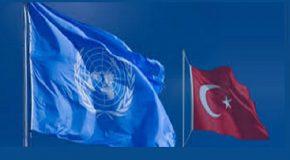 TÜRKİYE'NİN BM GÜVENLİK KONSEYİ GEÇİCİ ÜYELİĞİ (2009-2010)